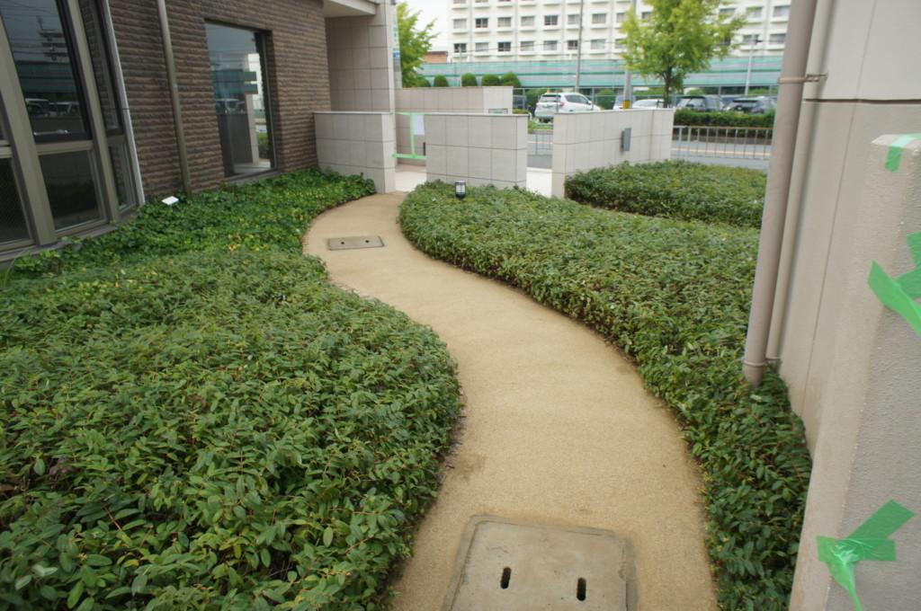 自然土 固まる土(マサファルト)施工