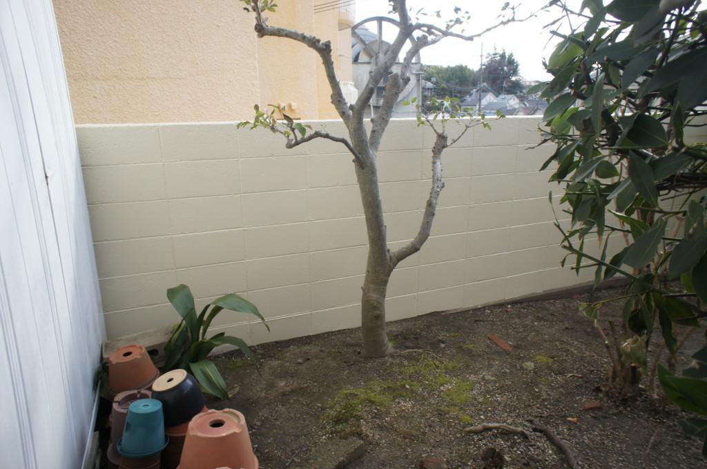 ブロック塀・塗装リフォーム